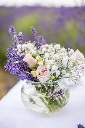 Lavender Fields Styling Shoot
